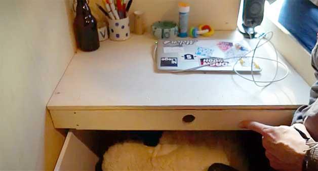 small-desk
