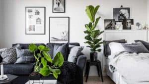 Studio apartment layout example